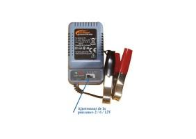 Chargeur pour batterie réglable
