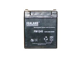 Batterie 12 V rechargeable