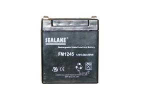 Batterie 12 V rechargeable